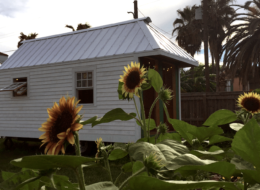 preservation_tiny_house-image_louisiana